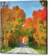 A Road Less Traveled Acrylic Print