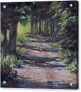 A Road Less Travelled Acrylic Print