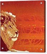 A Roaring Lion Kills No Game Acrylic Print