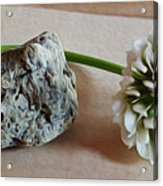 A Rock And A Soft Place Acrylic Print
