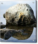 A Rock In Still Water Acrylic Print