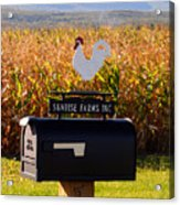 A Rooster Above A Mailbox 1 Acrylic Print