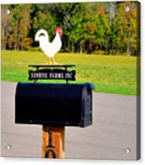 A Rooster Above A Mailbox 3 Acrylic Print