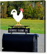 A Rooster Above A Mailbox 4 Acrylic Print