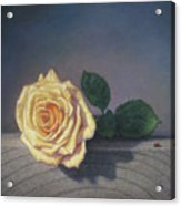A Rose For The Little Lady Acrylic Print