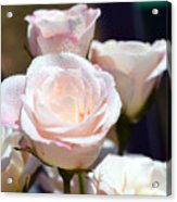A Rose For You Acrylic Print