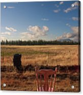 A Seat With A View Acrylic Print