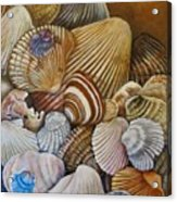 A Shell Of A Good Time Acrylic Print