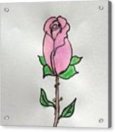 A Single Rose Acrylic Print