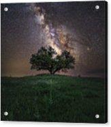 A Sky Full Of Stars Acrylic Print