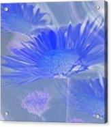A Slanting Blue Wind  Acrylic Print