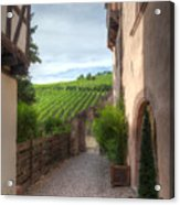 A  Small Side Street In Riquewihr Acrylic Print
