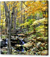 A Smokey Mountain Stream  Acrylic Print