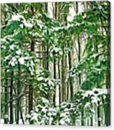 A Snowy Day - Paint Acrylic Print