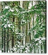 A Snowy Day Acrylic Print