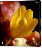 A Softer Shade Of Yellow Acrylic Print
