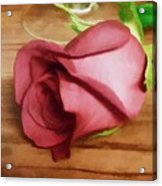 A Special Rose Acrylic Print