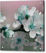 A Splash Of Color Acrylic Print