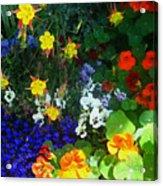 A Spring Garden Medley Acrylic Print