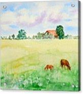 A Spring Graze Acrylic Print