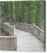 A Stairway View Acrylic Print