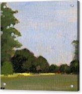 A Streak Of Sun - Queeny Park Acrylic Print