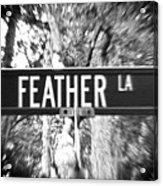 Fe - A Street Sign Named Feather Acrylic Print