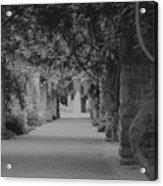 A Stroll Under The Vines Bw Acrylic Print