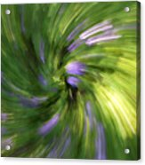 A Swirl Of Color Abstract Acrylic Print