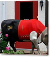 A Swiss Cow In New Glarus Wi Acrylic Print