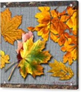 A Taste Of Fall Acrylic Print