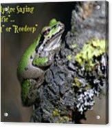 A Terrific Frog #1 Acrylic Print
