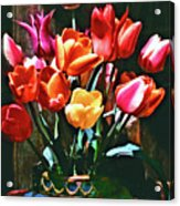 A Time For Tulips Acrylic Print