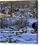 A Time To Thaw Acrylic Print