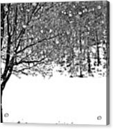 A Tree In Snowy Winter Acrylic Print