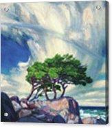A Tree On The Seashore Reef Acrylic Print