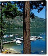 A Trees View Of Fallen Leaf Lake Acrylic Print