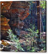 A Trickle Of Water Acrylic Print