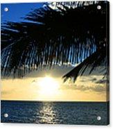 A Tropical Sensation Acrylic Print