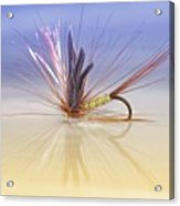 A Trout Fly (greenwell's Glory) Acrylic Print