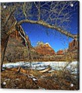 A View In Zion Acrylic Print