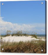 A View Of The Dunes Acrylic Print