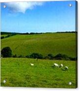 A View Over Exmoor 2 Acrylic Print