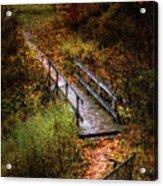 A Walk In The Park II Acrylic Print