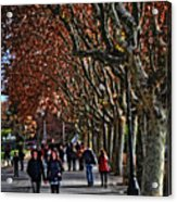 A Walk In The Park - Valencia Acrylic Print
