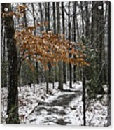 A Walk In The Snow Quantico National Cemetery Acrylic Print