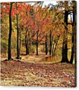 A Walk Through Autumn  Acrylic Print