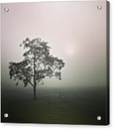 A Walk Through The Clouds #fog #nuneaton Acrylic Print by John Edwards