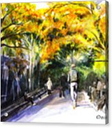 A Walk Through The Park Acrylic Print