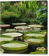A Water Garden Acrylic Print